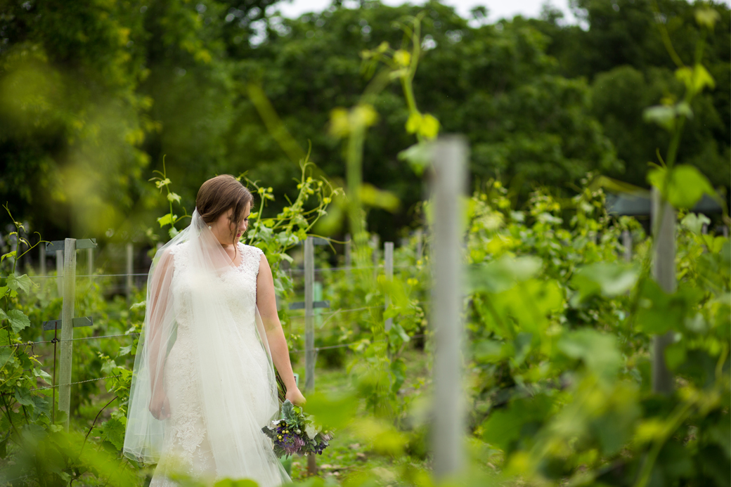 481cf67240d wedding dress trends lovebird bridal kingston photographer rob whelan  portrait vineyard bride waupoos pec